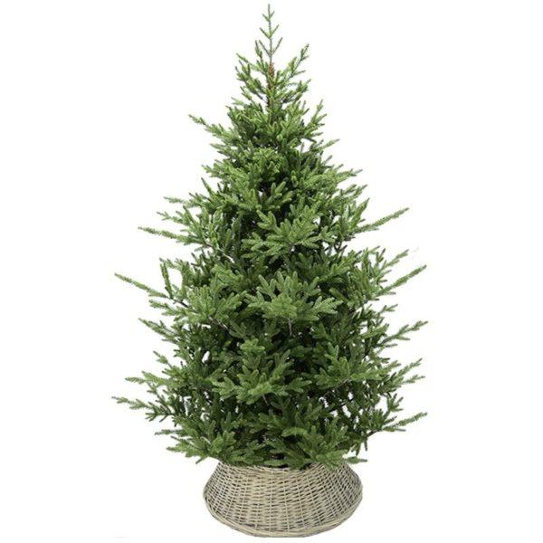 Χριστουγεννιάτικο Δέντρο Πράσινο Σε Καλάθι Υ210 | ZAROS