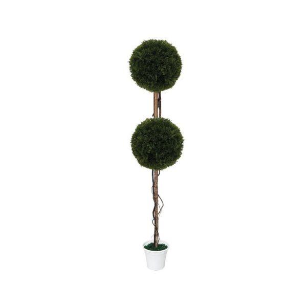 Δέντρο 2 Μπάλες Λεμονοκυπάρισσο Δ28 Με Φυσικό Κορμό Υ130