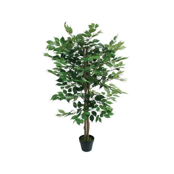 Δέντρο Μπέντζαμιν Πράσινο Σε Γλάστρα Υ120