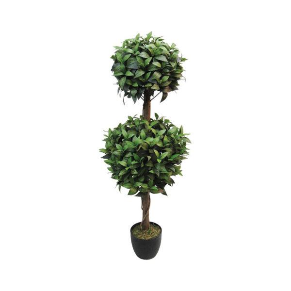 Δέντρο Δάφνη Στρογγυλό Σε Γλάστρα Υ120