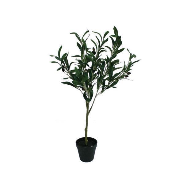 Δέντρο Ελιά Σε Γλάστρα Υ65