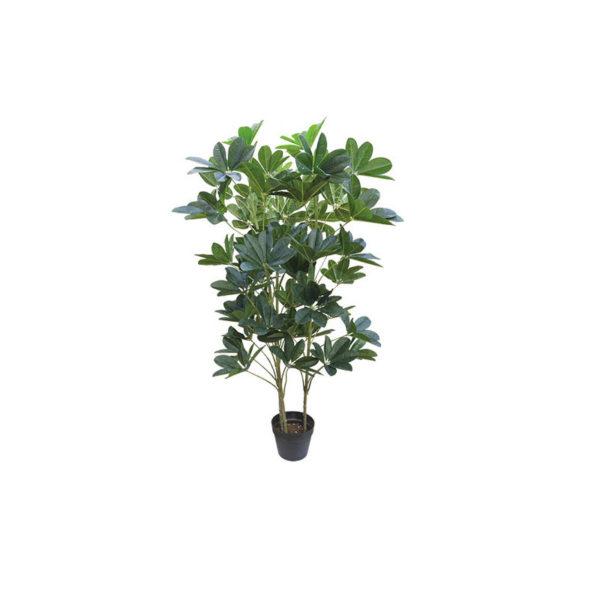 Δέντρο Με Πράσινο Φύλλωμα Σε Γλάστρα Υ128