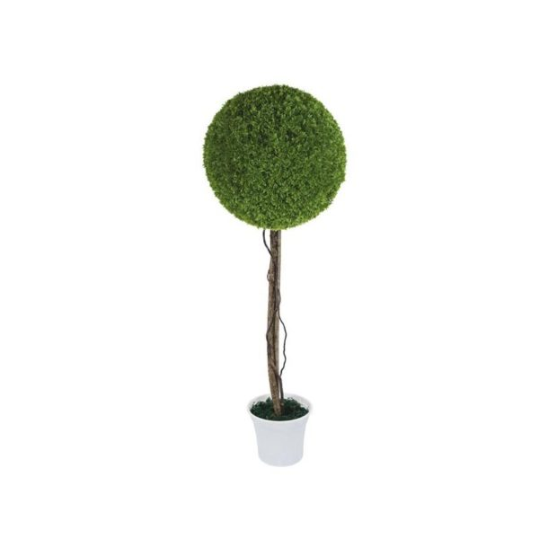 Δέντρο Μονή Μπάλα Λεμονοκυπάρισσο Δ38 Με Φυσικό Κορμό Υ90