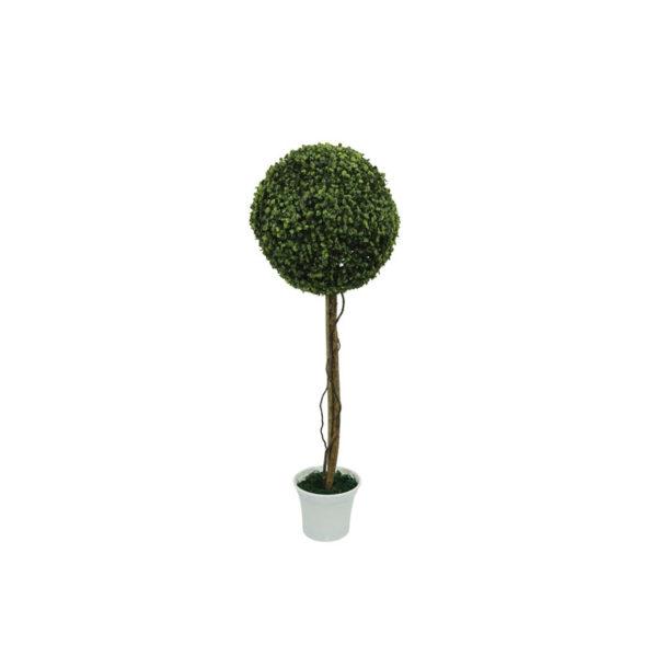 Δέντρο Μονή Μπάλα Τριφύλλι Δ38 Με Φυσικό Κορμό Σε Γλάστρα Υ90
