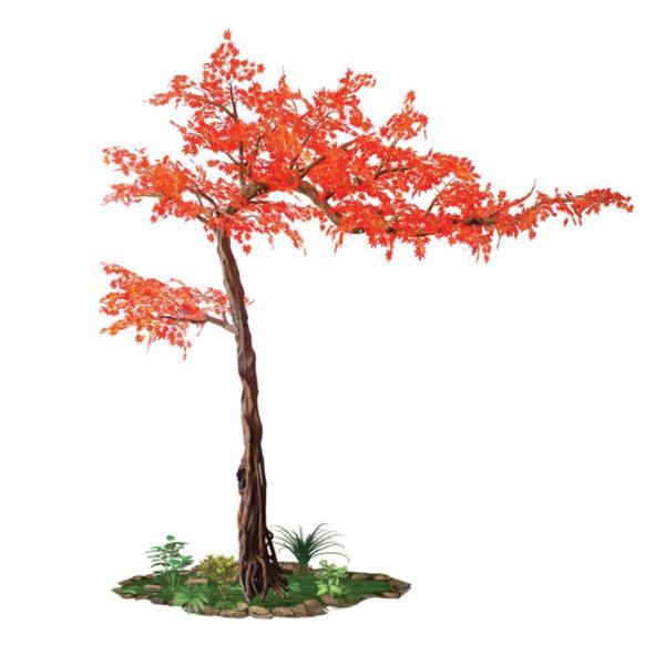 Δέντρο Σφένδαμος Κόκκινος Υ280