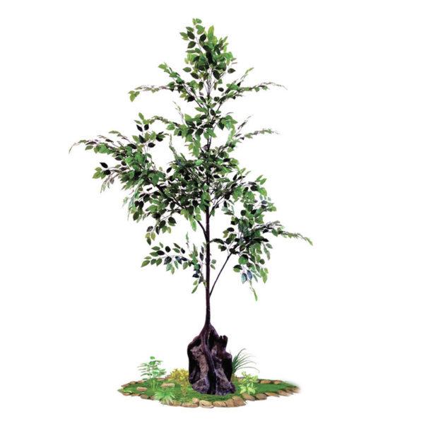 Δέντρο Συκιά Υ200