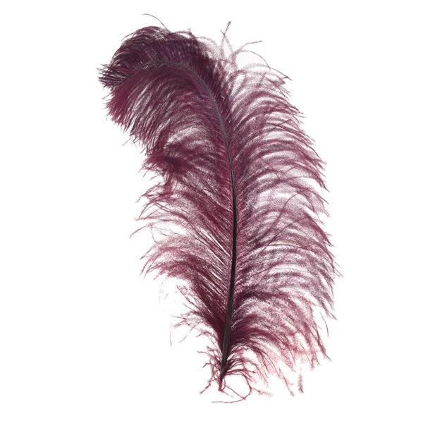 Διακοσμητικό Φτερό Φούξια Υ95, Inart