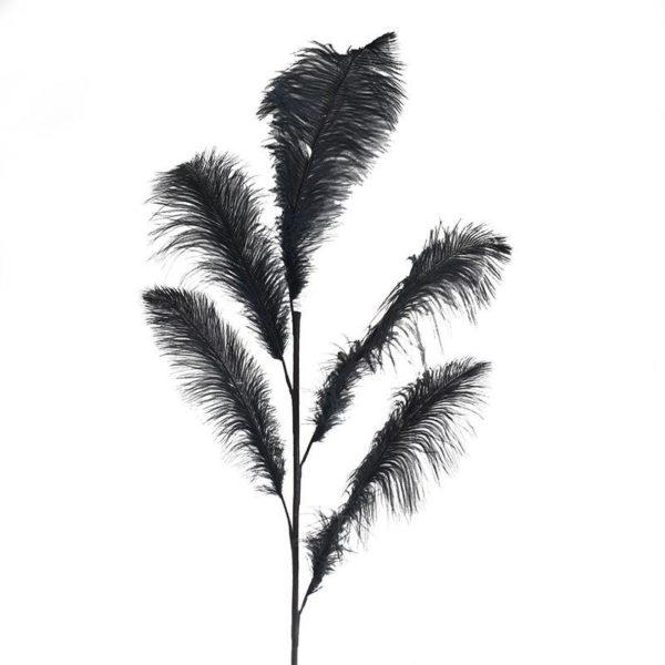 Διακοσμητικό Φτερό Μαύρο Υ55, Inart