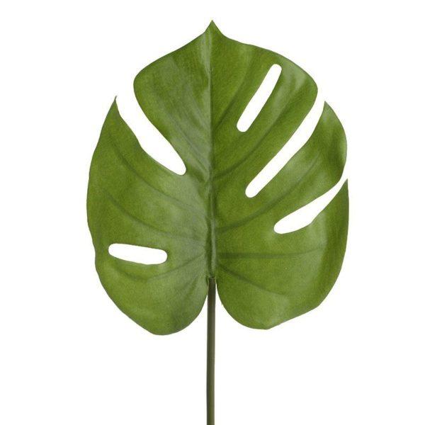 Φύλλωμα Τροπικό Μονστέρα Πράσινο Υ53