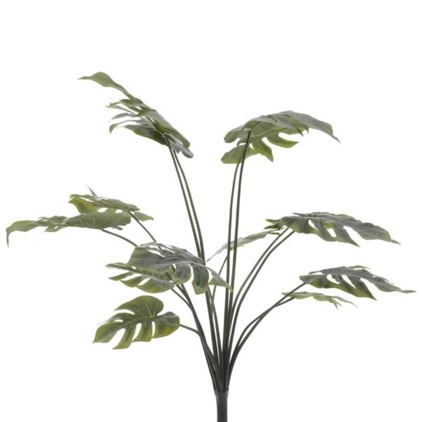 Φυλλώματα Τροπικά Μονστέρα Πράσινο Υ110