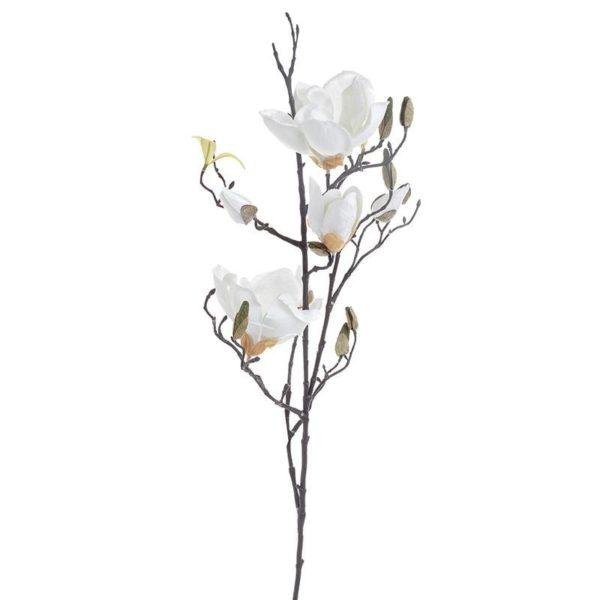 Κλαδί Μανόλιες Λευκές Με Μπουμπούκια Y92