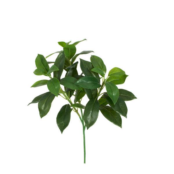 Κλαδί Με Πράσινο Φύλλωμα Υ42