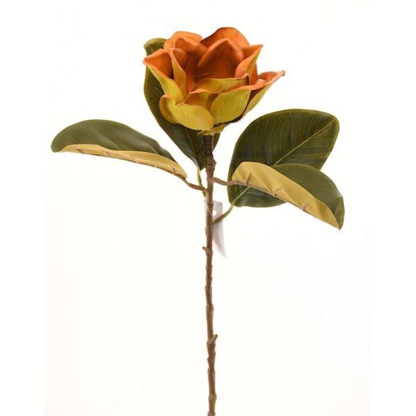 Μανόλια Ανθισμένη Δίχρωμη Κίτρινο/ Πορτοκαλί Υ75