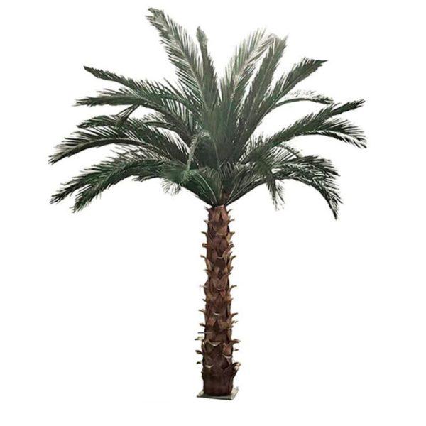 Τεχνητό Δέντρο Φοίνικας Υ300, Β