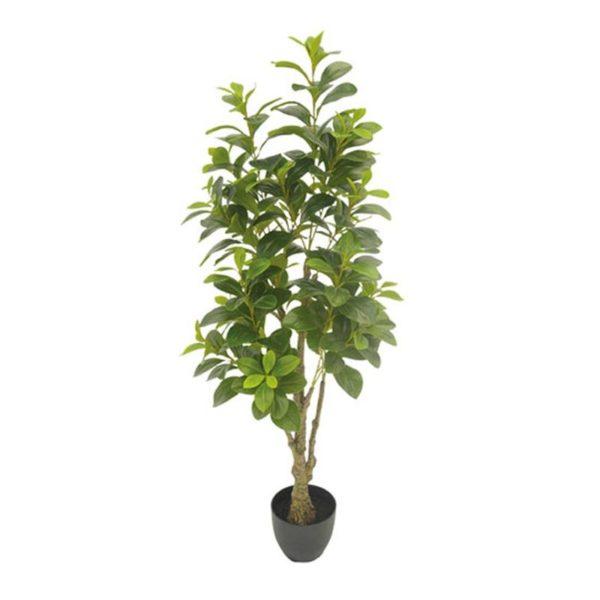 Τεχνητό Φυτό Παχύρα Πράσινη Σε Γλάστρα Υ130