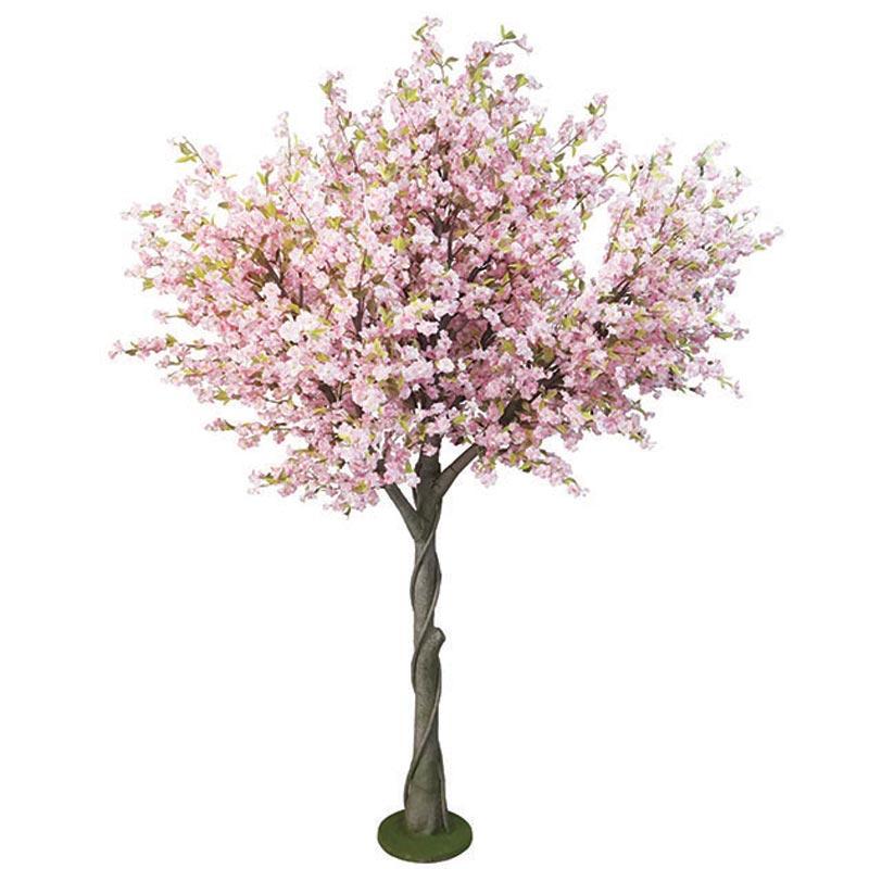 Δέντρο Κερασιά Ροζ Υ300