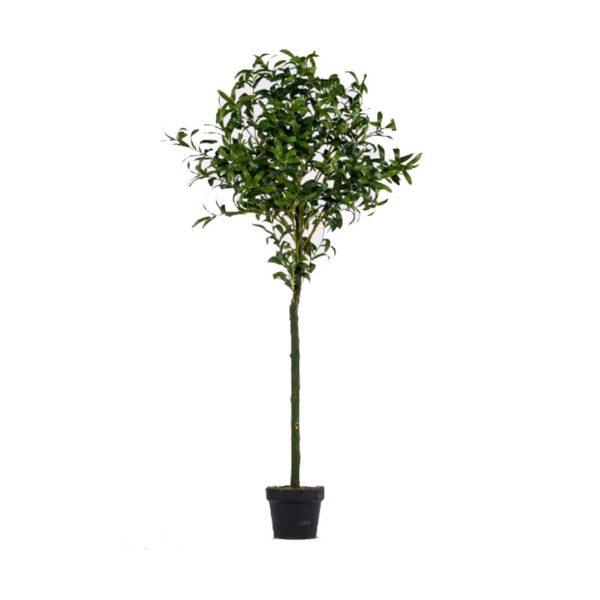 Τεχνητό Δέντρο Ελιά Σε Γλάστρα Υ150