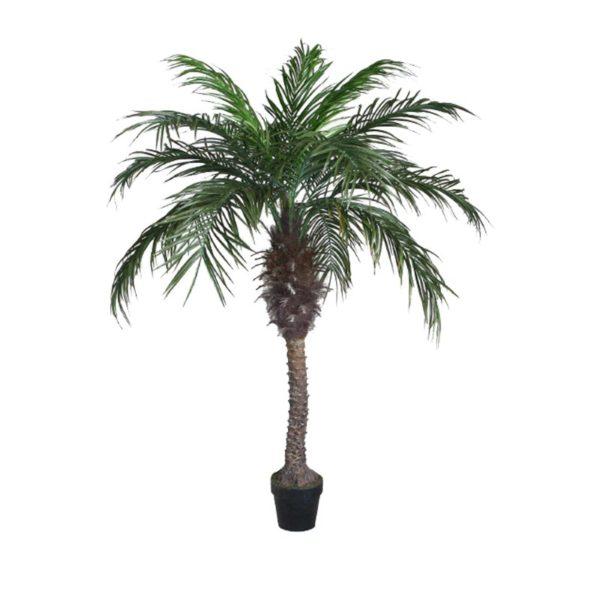 Τεχνητό Δέντρο Φοίνικας Σε Γλάστρα Υ160