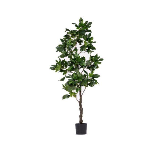 Τεχνητό Δέντρο Συκιά Υ210
