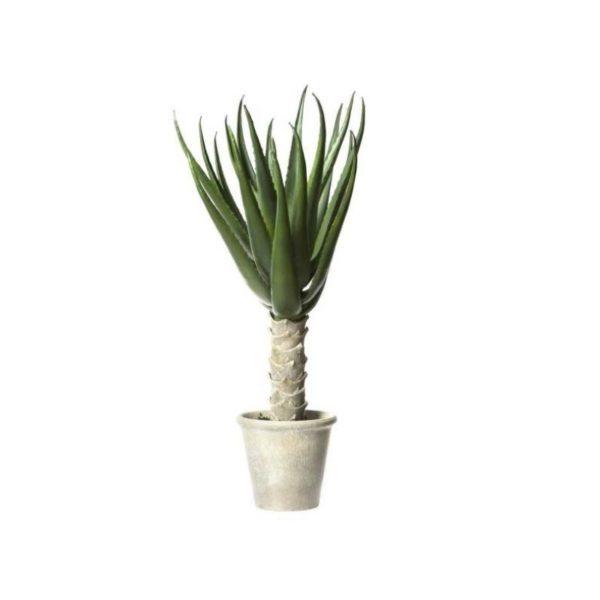 Τεχνητό Φυτό Αλόη Σε Γλάστρα Υ70