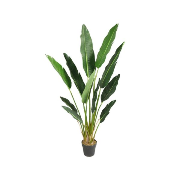 Τεχνητό Φυτό Πουλί Του Παραδείσου Σε Γλάστρα Υ150
