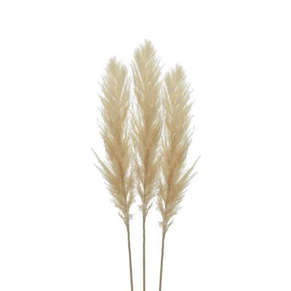 Διακοσμητικό Κλαδί 'Pampas Grass' Natural Υ110, Σετ Των 3, Inart