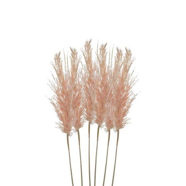 Διακοσμητικό Κλαδί 'Pampas Grass' Warm Pink Υ70, Σετ Των 6, Inart