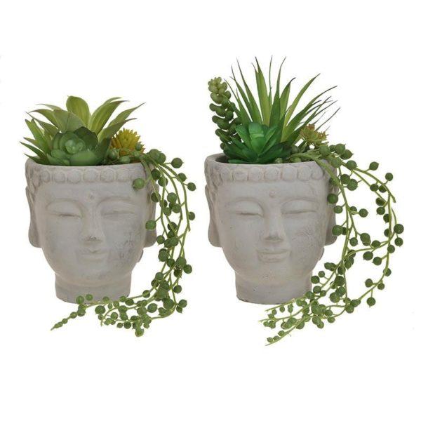 Τεχνητό Φυτό Σε Κασπό Βούδα Υ20, Σε 2 Σχέδια, Inart
