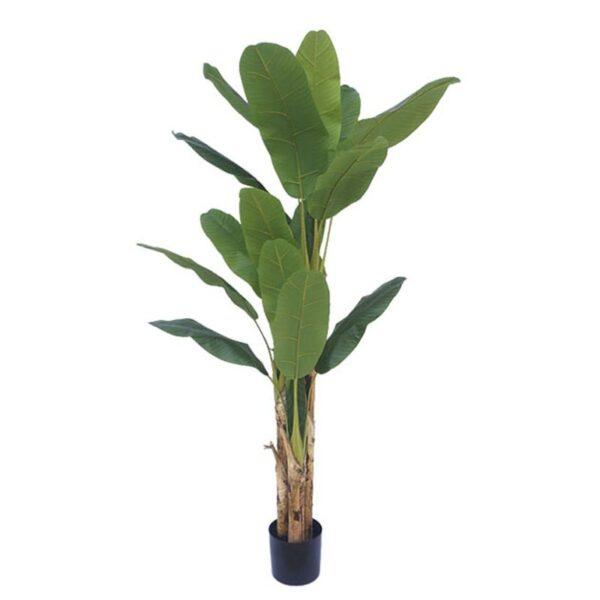 Τεχνητό Δέντρο Μπανανιά Διπλή 22φ Πράσινη Σε Γλάστρα Υ190