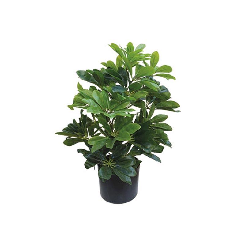 Τεχνητό Φυτό Σεφλέρα Πράσινο Real Touch Σε Γλάστρα Υ61
