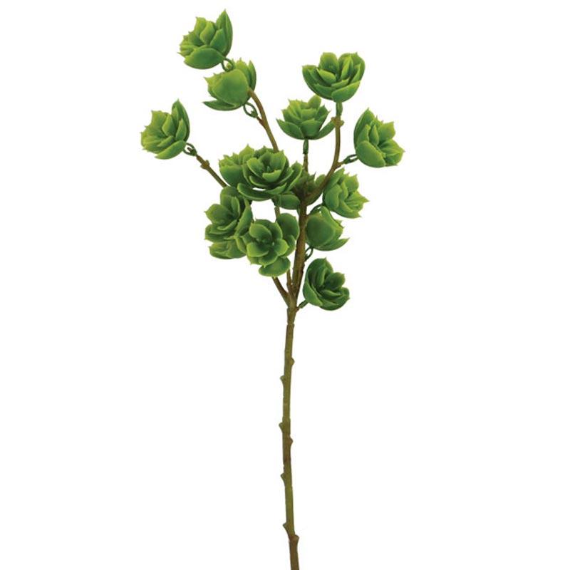 Διακοσμητικό Κλαδί Παχύφυτο Πράσινο Υ53cm